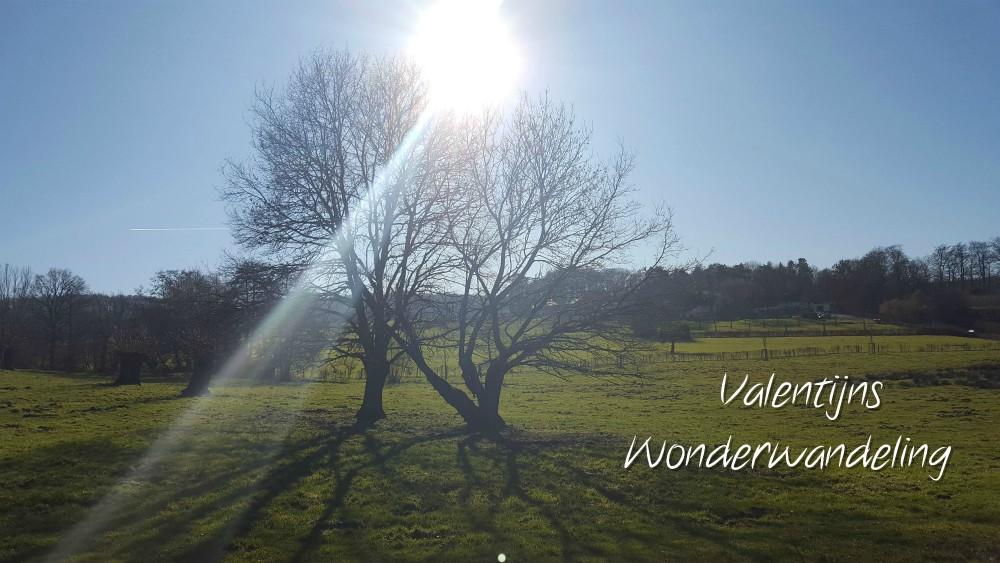 Winter Wonder Wandeling