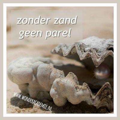 schelp met parel en zand