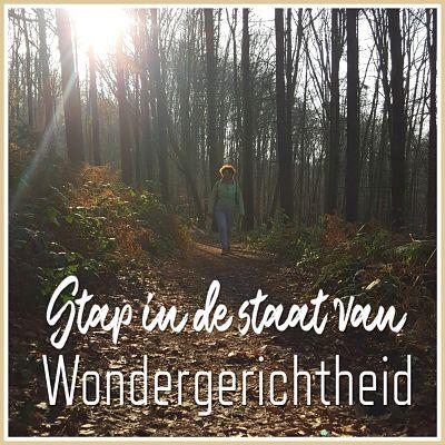 wondergerichtheid - cursus in wonderen - limburg - wonderwandeling